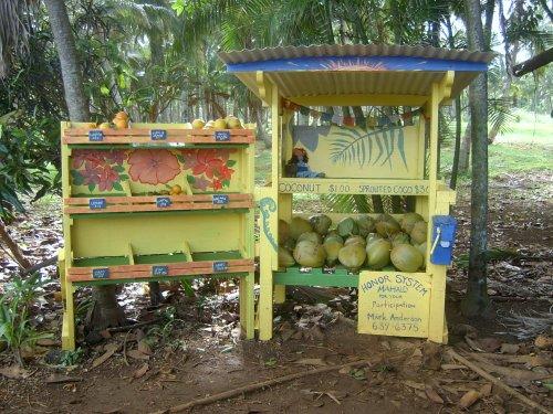Kauai Roadside Stand